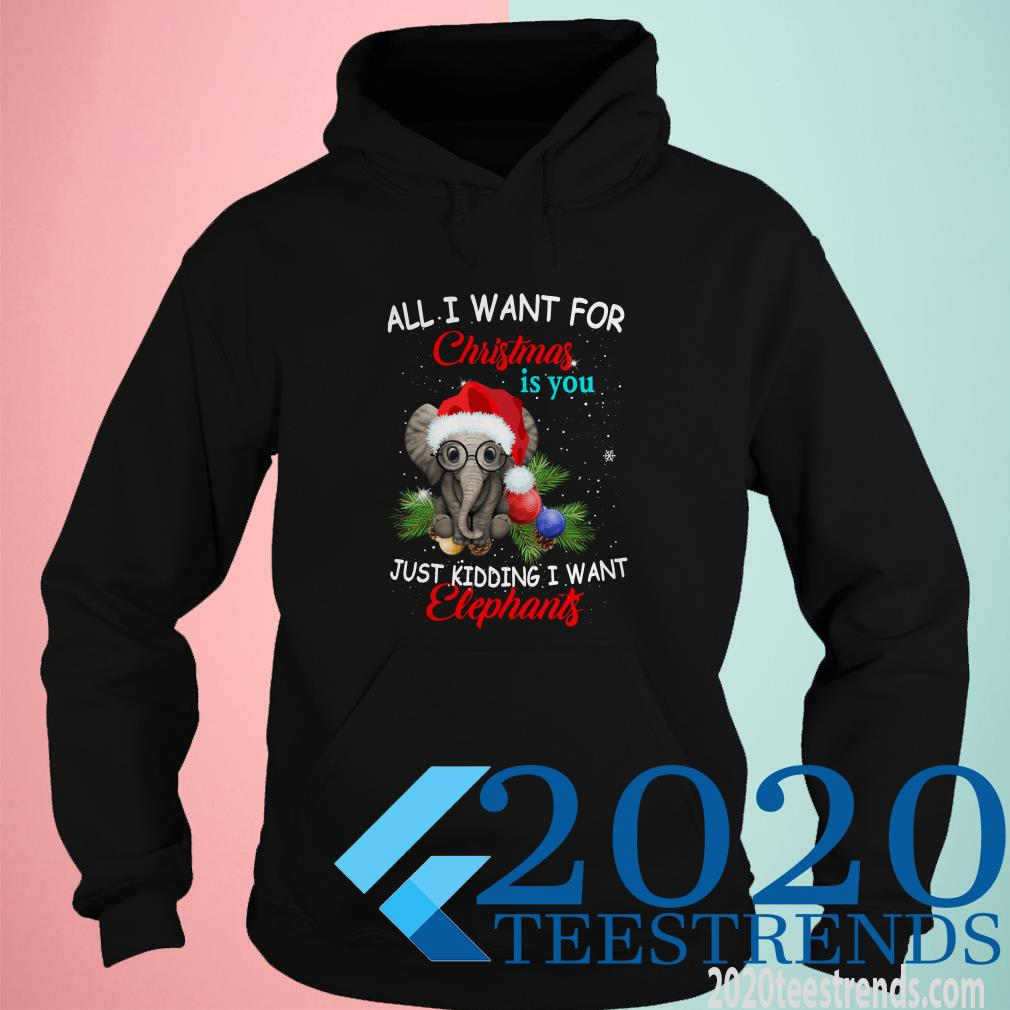All I Want For Christmas Is You Just Kidding I Want Elephant Hoodies