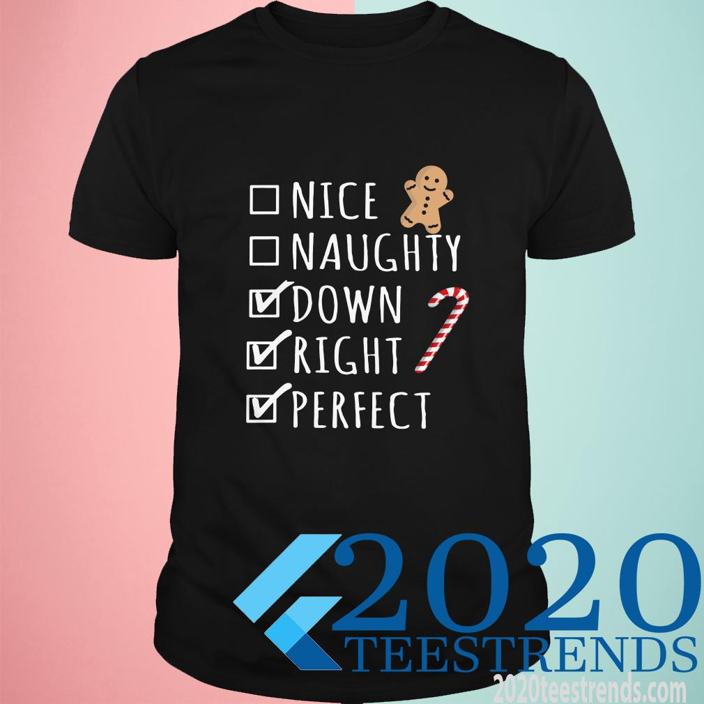 Where To Buy Christmas Nice Naughty Down Right Perfect T-Shirt