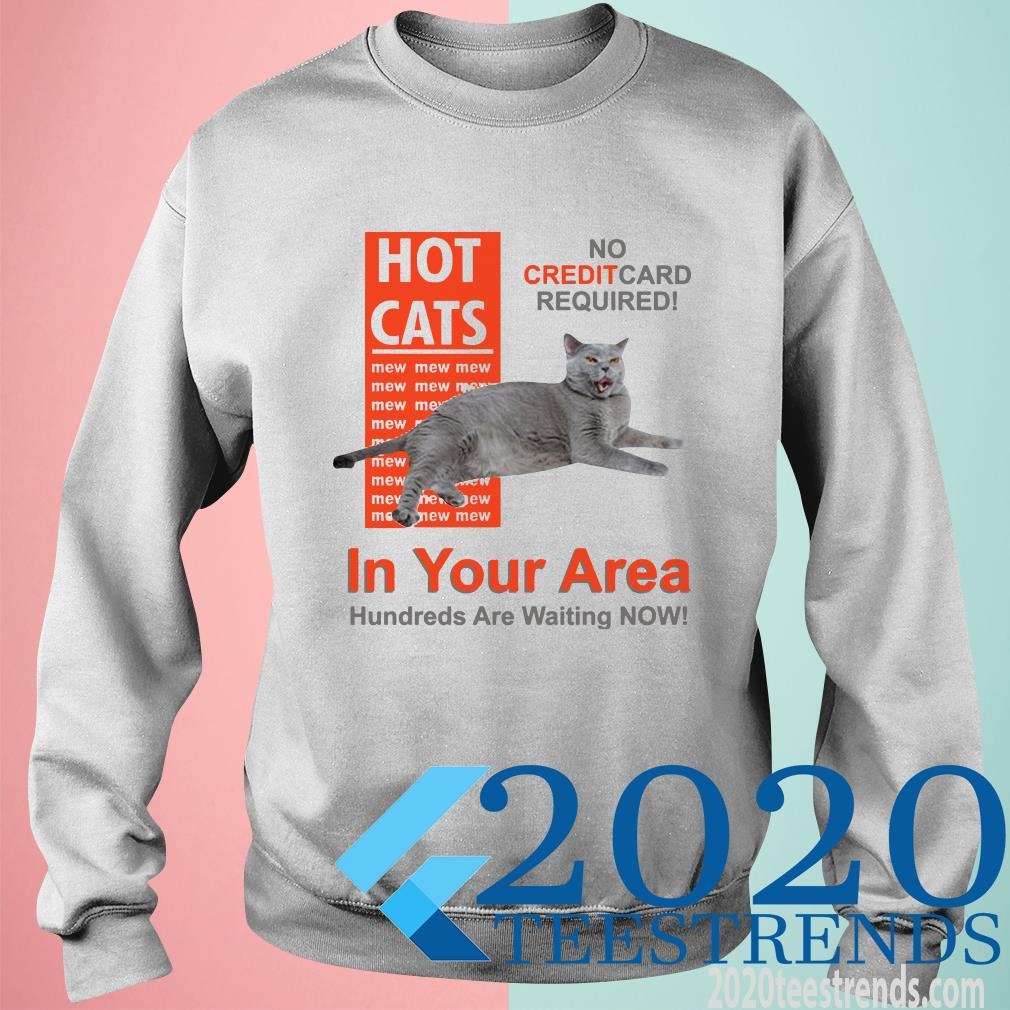 Hot Cats In Your Area Sweater